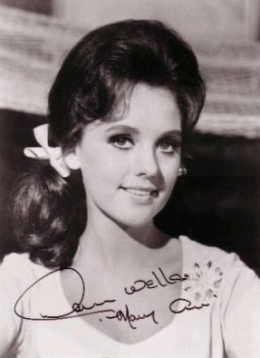 Dawn Wells Net Worth Picture to Pin on Pinterest - ThePinsta
